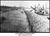 Dam24 at Racine Ohio 1915 (002).jpg
